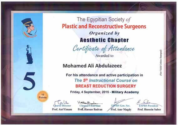 plastic and reconstructive surgeons by Aesthetic chapter